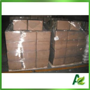 Feed Additive Sodium Butyrate Powder 98% Purity with Factory Price pictures & photos