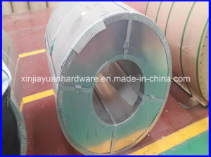 Galvanized /Prepainted Steel Coil for Building Material pictures & photos