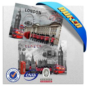 Promotional Gifts for 3D Lenticular Fridge Magnets pictures & photos