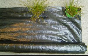 PP Weed Mat for Lawn and Garden Use pictures & photos