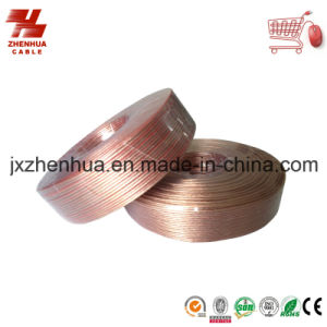 Hi End Transparent Flat Speaker Cable From China Factory pictures & photos