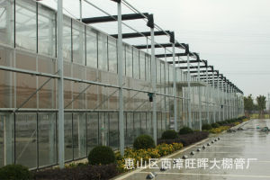 Factory Sales Cheapest Price Venlo Greenhouse with Hydroponic System for Rose pictures & photos
