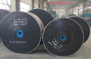 Filter/Dewatering Conveyor Belts