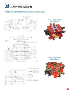 DLY20.2 Hydraulic Control Valve Components Relief Valve Manufacturer Types pictures & photos