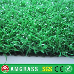Golf Artificial Turf and Synthetic Grass for Garden pictures & photos