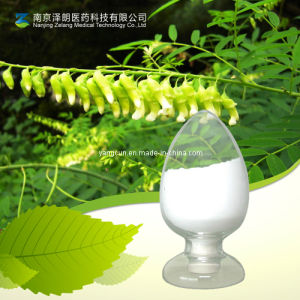 Bitter Sophora Root Extract Powder Matrine and Oxymatrine pictures & photos
