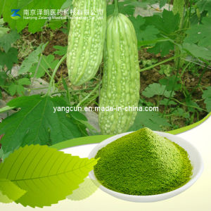 Bitter Melon Extract Charantin Balsam Pear Bitter Gourd Extract Powder pictures & photos
