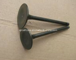 High Quality Motorcycle Engine Valve (GXT200) for Motorcycle Parts pictures & photos