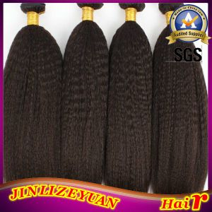 Kinky Straight Virgin Brazilian Human Hair Weaving (ZYWEFT-76) pictures & photos