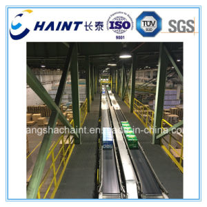 Unit Load Conveyor and Automatic Robot Palletizer pictures & photos