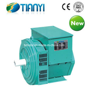 Twg Series Three-Phase Synchronous Brushless Generator (TWG-120) pictures & photos