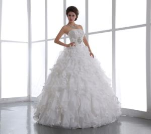 Gorgeous Embroidery Bodice Ball Gown Wedding Dress (Ogt023W)