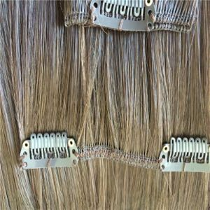 100% Brazilian Remy Hair Clips in Hair Weft Human Hair Extensions pictures & photos