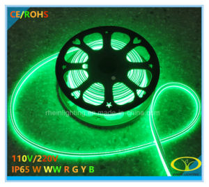 2835SMD 220V LED Neon Flex with Ce RoHS Certification pictures & photos