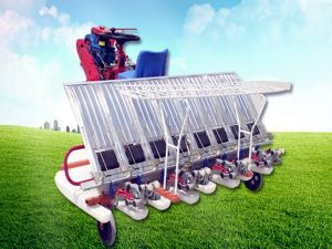 6 Rows Rice Transplanter with 2 Wheels (2ZT-6300B) pictures & photos