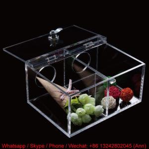 Eco-Friendly Acrylic Storage Box pictures & photos