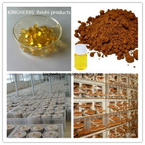 Reishi Spore Powder / Oil / Softgel pictures & photos