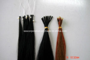 Remy Human Hair with Keratin Hair Extensions pictures & photos