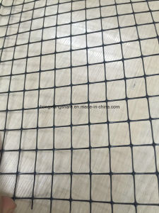 Anti Bird Netting Plastic Knitted Net Stretch Net pictures & photos