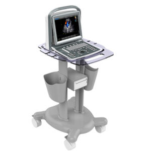 Veterinary Ultrasound Color Doppler Laptop Portable (SC-ECO5) pictures & photos