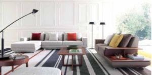 Popular Furniture Modern Living Room Sofa in Sofa pictures & photos