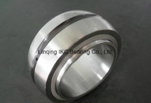 Germany Cylindrical Roller Bearing SL06038 SL06032 pictures & photos