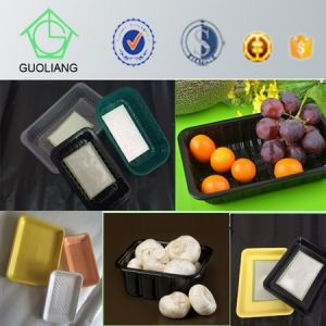 Custom Made PP&Pet&Styrofoamt Frozen Food Container for Meat Packaging with Paper Padded pictures & photos