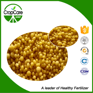 NPK Water Soluble Fertilizer 20-20-20 Manufacturer pictures & photos
