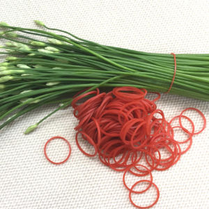 Customized Eco-Friendly Elastic Silicon, EPDM, Natural Rubber Band pictures & photos