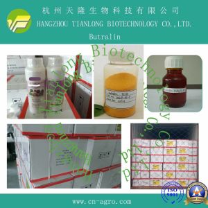 Highly Effective Herbicides Butralin (95% TC, 36%EC, 48%EC) pictures & photos