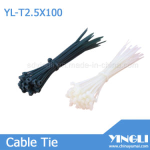 Nylon Cable Tie with RoHS Approval (2.5X100mm) pictures & photos