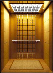 German Professional Vvvf Drive Home Villa Elevator (RLS-221) pictures & photos