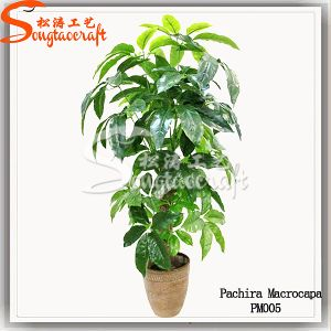 Hand Feeling Home Decoration Green Artificial Tree Bonsai Plant pictures & photos