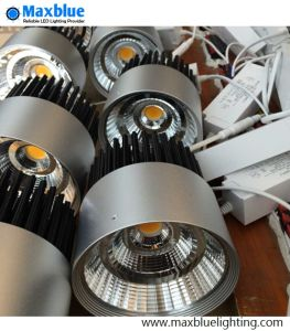 30W Cut Hole 140mm Silver Housing COB LED Downlight pictures & photos