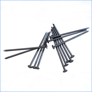 Hot Sale Common Iron Wire Nail for Construction pictures & photos