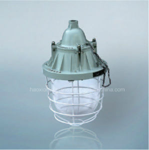 Explosion Proof Light Halogen Light pictures & photos