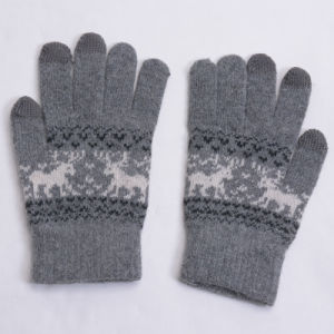 Warm Keeping Thick Wool Touch Gloves pictures & photos