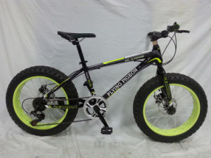 "Popular New Model 20"" *4.0 Wide Fat Tire Bike (FP-MTB-FAT07) pictures & photos"