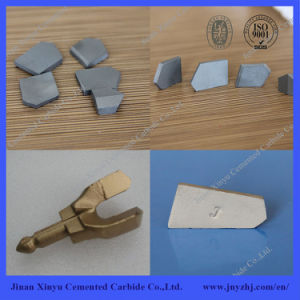 Tungsten Carbide Inserts for Coal Cutting pictures & photos