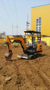 2 Ton Small Mini Cheap Price Ce Crawler Digger Excavator pictures & photos