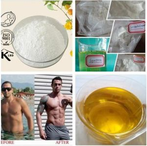 Good Price Steroid Powder Sustanon 400 Testosterone Sustanon 400mg/Ml Injection pictures & photos