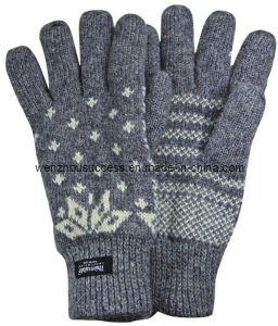 Knitted Gloves Sh12-2g015 pictures & photos