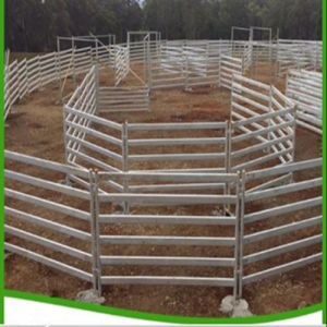 Wholesale Australia Portable Galvanized Used Livestock Panels for Cattle Yard pictures & photos