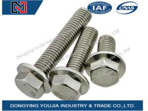GB5789 Stainless Steel Large Hexagon Flange Bolt pictures & photos