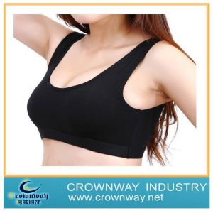 Wholesale Women′s Seamless Sports Bra / Seamless Underwear pictures & photos