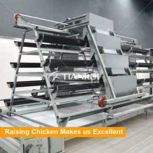 Automatic a type Chicken Layer Cage for Indonesia poultry farm pictures & photos