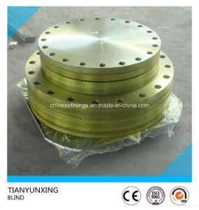 A182 F11 F22 F5 F91 Alloy Steel Blind Flange pictures & photos