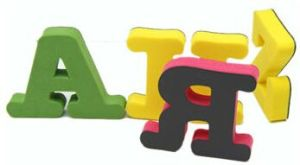 EVA Puzzle pictures & photos