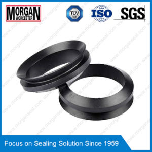 Viton/NBR/FKM Material Vs Profile V Ring Seal pictures & photos
