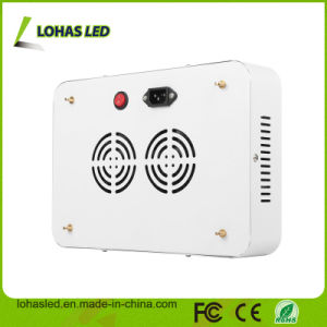 Ningbo High Power LED Lighting 300W-2000W LED Plant Light pictures & photos